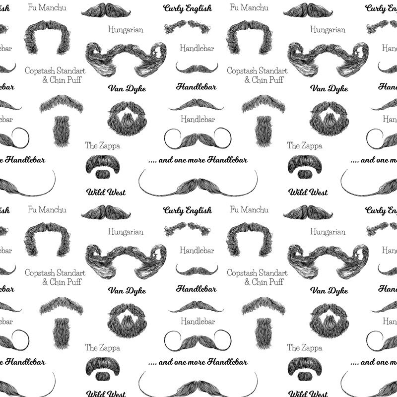 Check out all the different Moustache styles you can go for